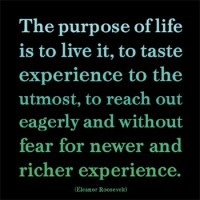 life-purpose-poster-web